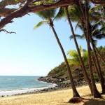 Turtle Cove, Paradise in FNQ (Australia)