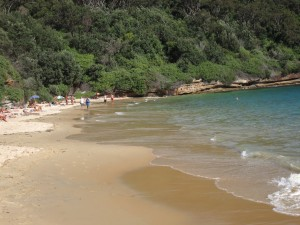 Nude Gay beach Sydney