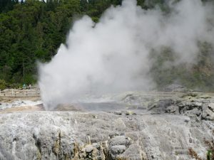 Geysers Rotorua